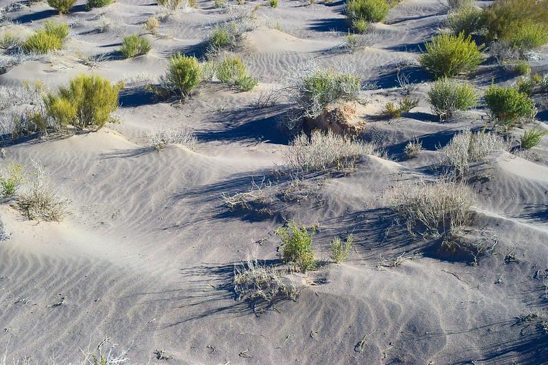 Dunes close to the salar de Uyuni in Bolivia