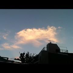 【写真】夕焼けその2。金色の雲。 Sunset no.2. Golden cloud. #夕焼け  #空 #雲 #sky #cloud #sunset