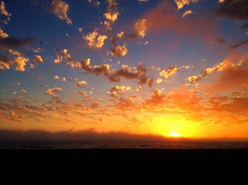 無料写真素材, 自然風景, 海, ビーチ・海岸, 朝焼け・夕焼け, 風景  アメリカ合衆国