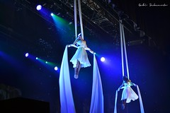stage(0.0), event(1.0), performing arts(1.0), aerialist(1.0), musical theatre(1.0), entertainment(1.0), performance(1.0), acrobatics(1.0), circus(1.0), performance art(1.0),