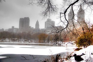 Winter on Central Park, New York #winter #snow #centralpark #manhattan #newyork #nyc #landscape