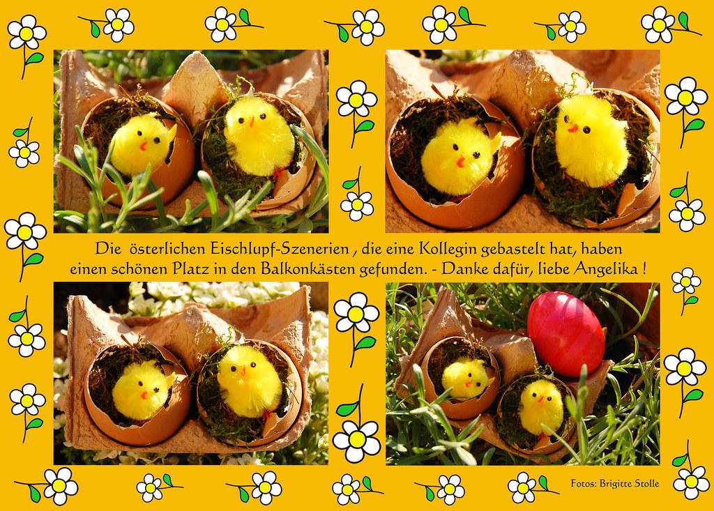 Ostern basteln Küken Eier Osterei frisch geschlüpft Schlupf