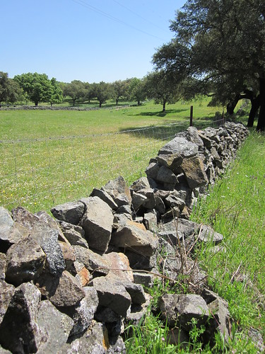 Muro de piedra seca, en una dehesa en Cala, Sevilla