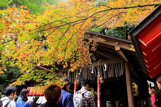 日本京都-竹林小徑_野宮神社49