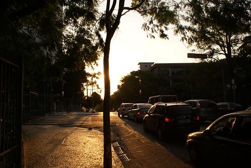 street light sunset red sun tree car sign brasil fence crossing traffic pavement drain zebra manhole a200 crossroads arimm