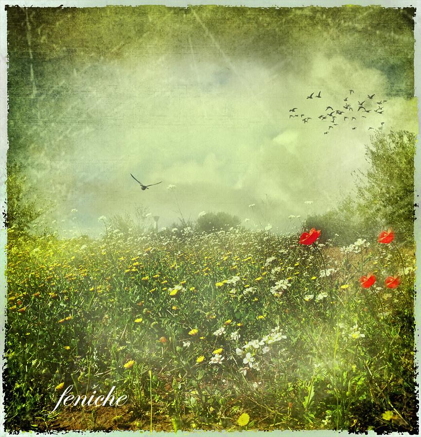 escenas de primavera