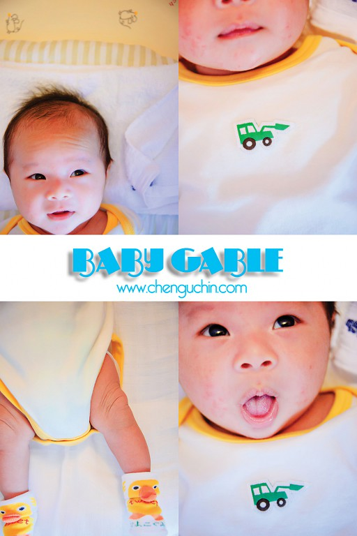 Baby Gable1