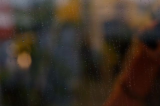 95/366: Lluvia y yo