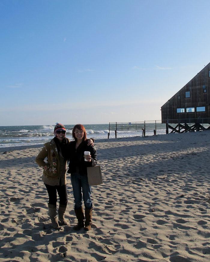 aa-catshirt-beach11