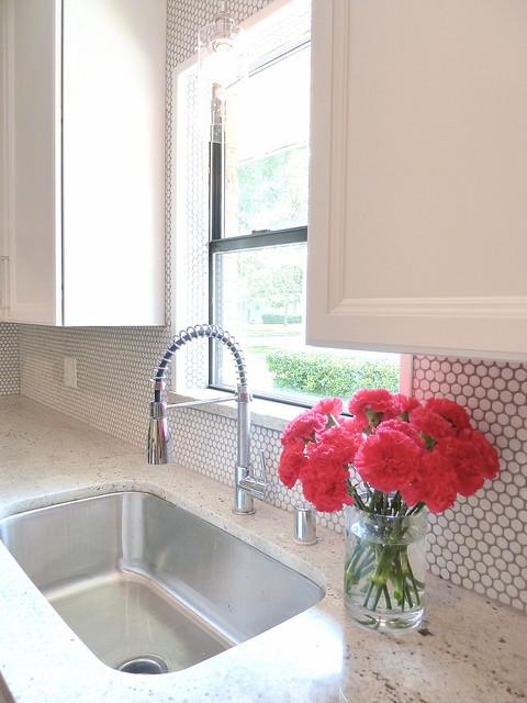 Penny Tile Kitchen Countertops