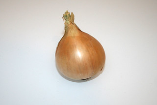 04 - Zutat Zwiebel / Ingredient onion