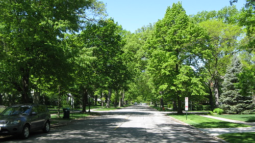 The very tree lined streets of Wilmette Illinois. May 2012. by Eddie from Chicago