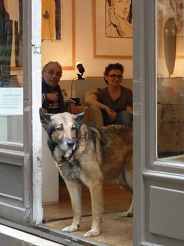 Art dog on rue Caulaincourt