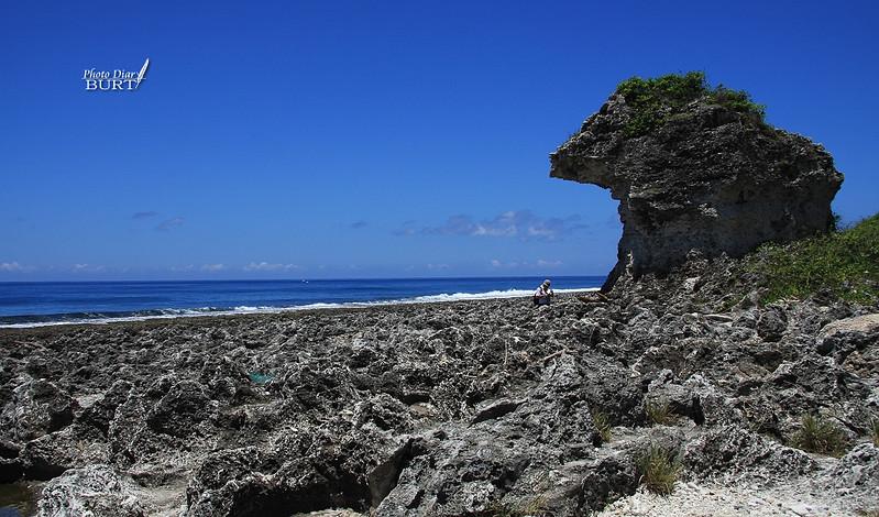厚石裙礁上工作