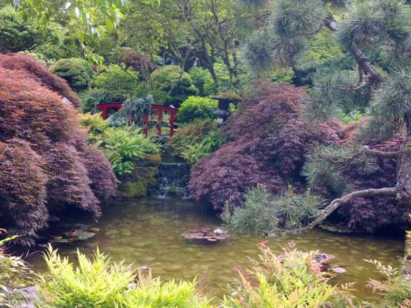 Japanese garden en jardines Butchart Canada 36