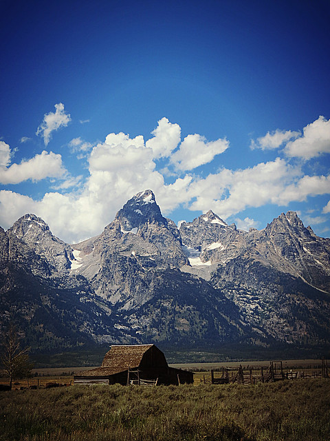 Grand Teton from Mormon Row