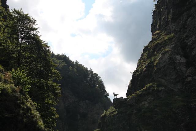 Am Hirschsprung 2/2