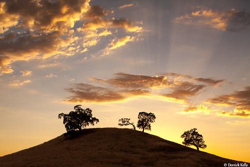 california sunset clouds landscape golden hill sacramento oaktrees 5dii canon5d2