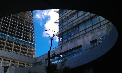 20120815-1 by Paladin R. Liu