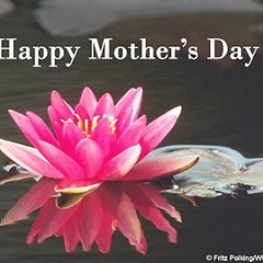 A very happy joy and blissful Mother's Day to everybody. Be happy,live your soul.