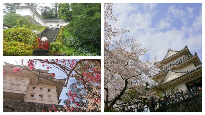 Odawara-castle04-720x405
