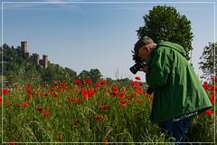 2016-05-07-papaveri a castello 2-2340_Fotor