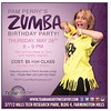 pam perry zumba party
