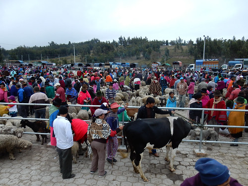 Saquisili: le marché indigène