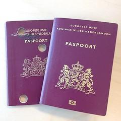 brand(0.0), text(1.0), passport(1.0), identity document(1.0), document(1.0),