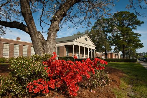 nature canon campus landscape outdoors spring azaleas 2012 pcc wintervillenc pittcommunitycollege pittcc vernonewhitebuilding