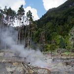 Hot springs of Furnas