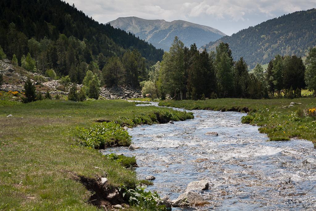 Curvas en el río