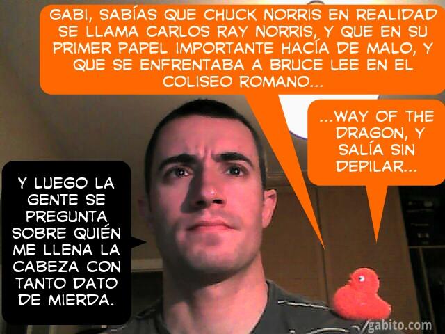 Saga de la Webcam I - Memoria de Pollo