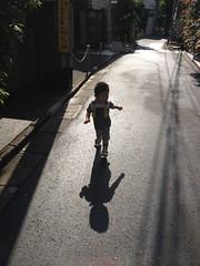 朝散歩 (2012/7/4)