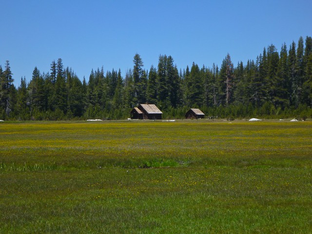 hockett meadow