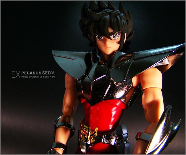 PegasusEX_02