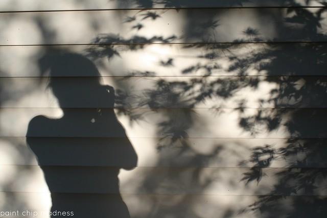 shadow + leaves