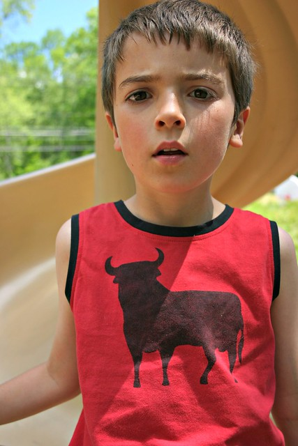bull shirt 2