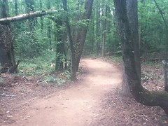 Haw Creek Singletrack