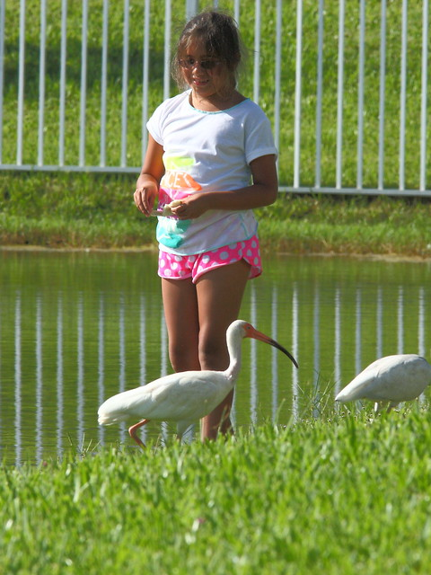 Nieta with ibises 2-20120727