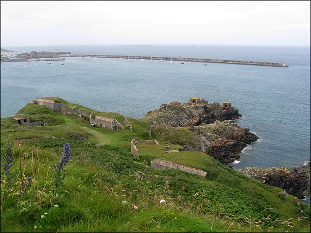 Fort Albert and Roselle Battery