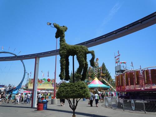 state fair 002