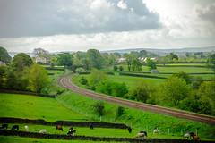 British rural scenery