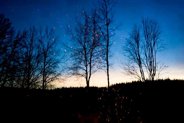 2012-01-14 18-00-00 Image 0006 Size 800 x 535_