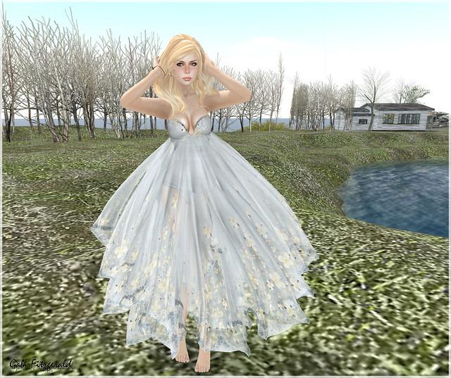 lpd new dress 3