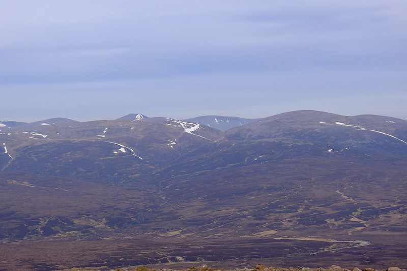 Looking up the Eidart