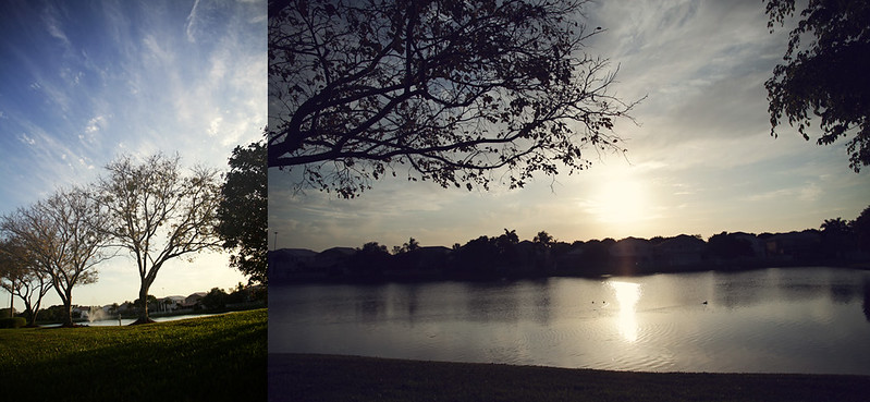 neighborhood lakescape diptych