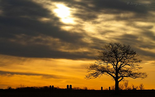 morning mauricie nicolet borderfx troisrivières sunsetlevéesoleilambreamberarbretreechampsskyciel
