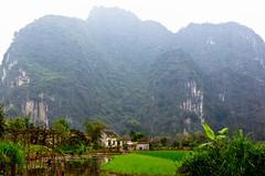Baie d'Ha Long Terrestre - Ninh Binh - Hoa Lu - 81