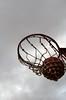 114/366: Basket